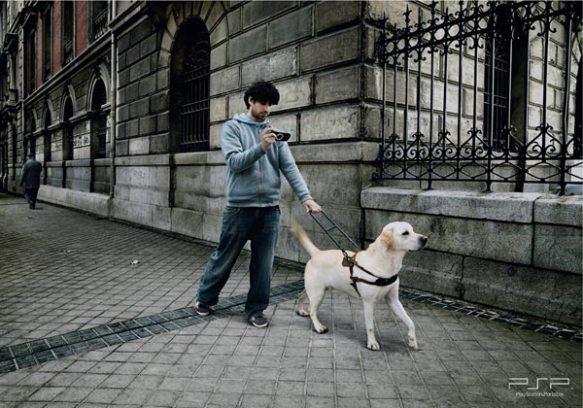 Hombre guiado por perro lazarillo