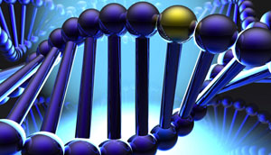 Genética y discapacidad intelectual